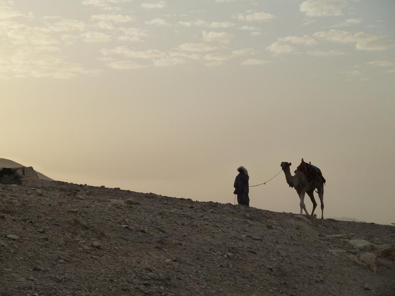 Mann mit Kamel, aufgenommen oberhalb des Wadi Qelt (in der Nähe des Georgsklosters, West Bank), November 2011. Fotograf: M. Hölscher